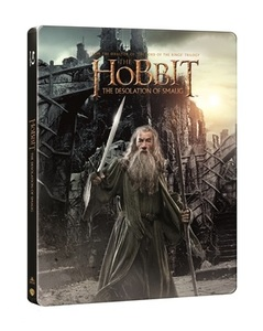 BLU-RAY / THE HOBBIT : THE DESOLATION OF SMAUG STEELBOOK LE (2 DISC)
