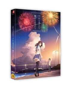 BLU-RAY / FIREWORKS, SHOULD WE SEE IT FROM THE SIDE OR THE BOTTOM? FULL SLIP